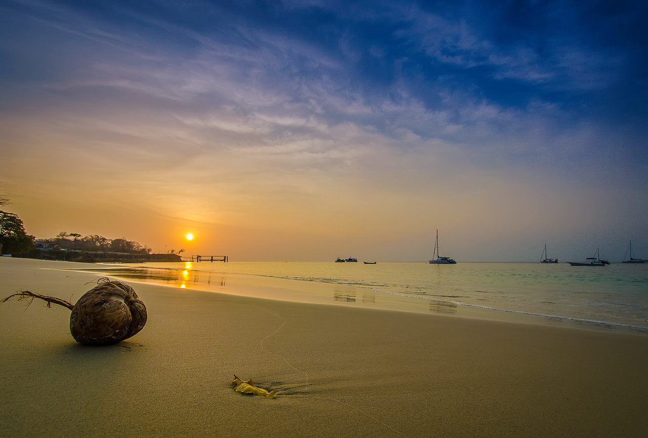 The Magical Paradise Coconut Photography 2 By Messagez com