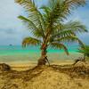 Original Paradise Island Fine Art Photography 47 By Messagez com
