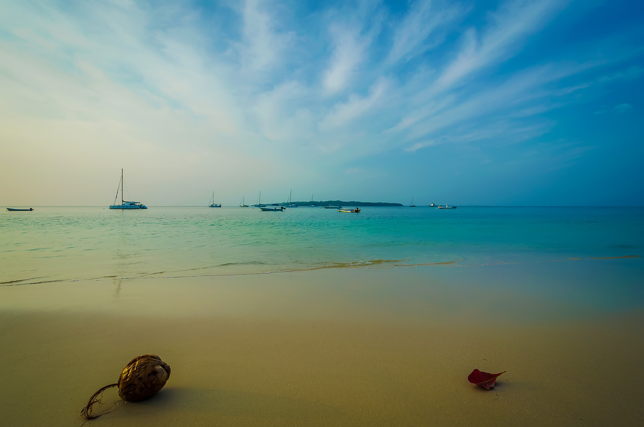 The Magical Paradise Coconut Photography 4 By Messagez com