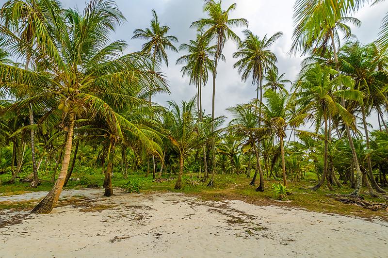 Original Paradise Fine Art Photography 25 By Messagez com