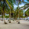 Original Paradise Island Photography 78 By Messagez com