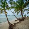 Paradise Island Photo 9 ~ Messagez.com