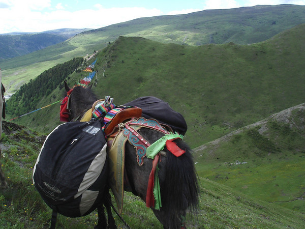 Climbing horseback with our paragliders.