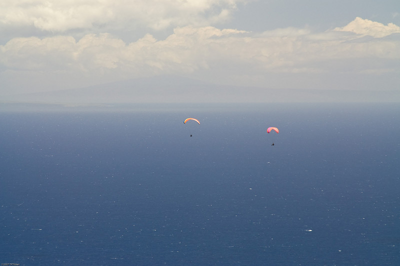 Paragliders  and Hang Gliders over Makapuu-64