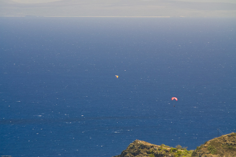 Paragliders  and Hang Gliders over Makapuu-19