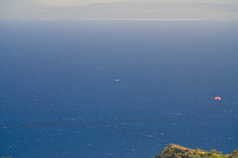 Paragliders  and Hang Gliders over Makapuu-18