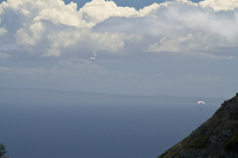 Paragliders  and Hang Gliders over Makapuu-4