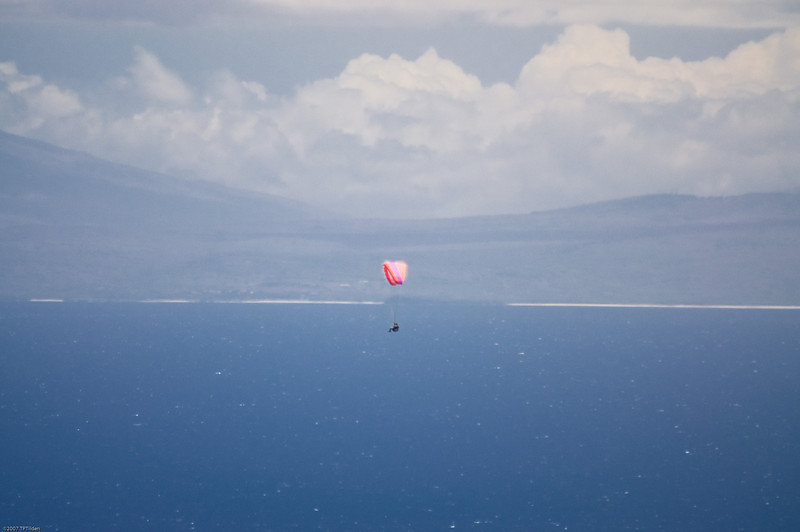 Paragliders  and Hang Gliders over Makapuu-69