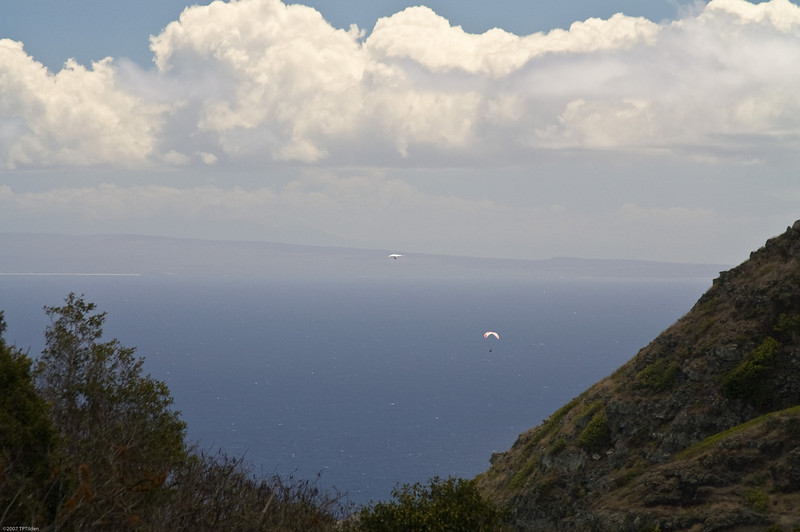 Paragliders  and Hang Gliders over Makapuu-6