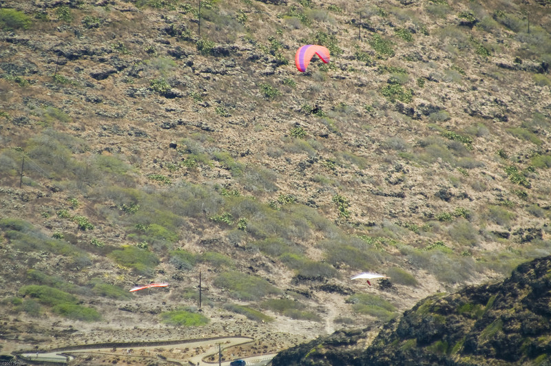 Paragliders  and Hang Gliders over Makapuu-62