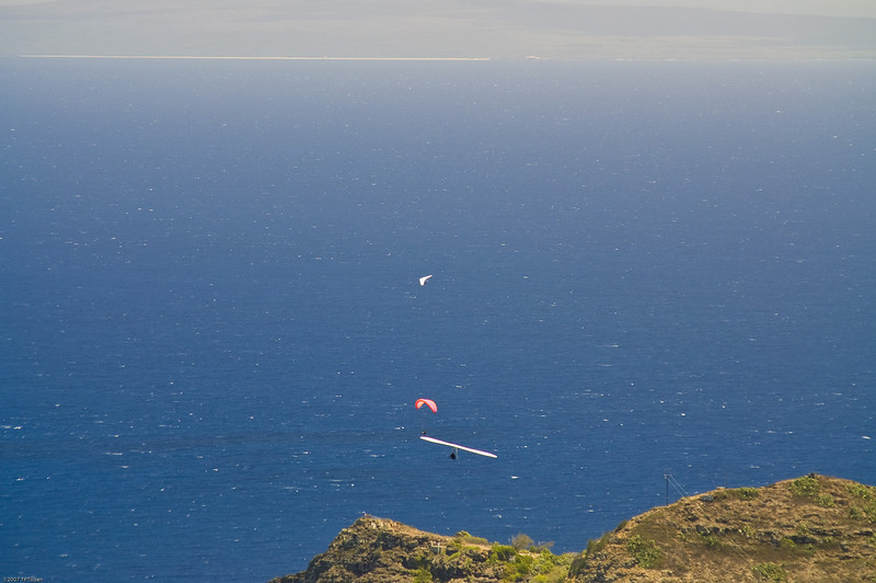 Paragliders  and Hang Gliders over Makapuu-24