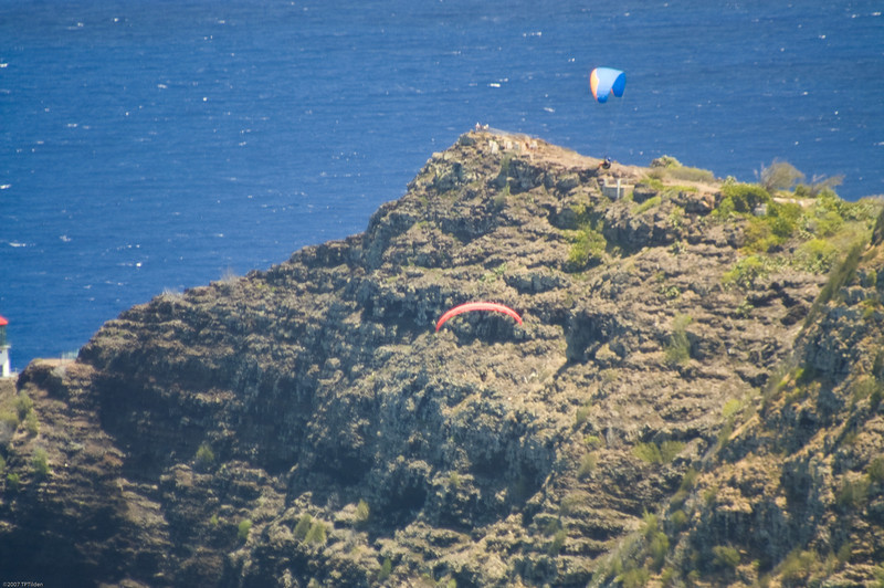 Paragliders  and Hang Gliders over Makapuu-32