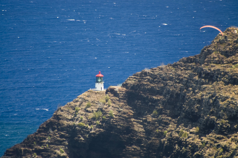 Paragliders  and Hang Gliders over Makapuu-54