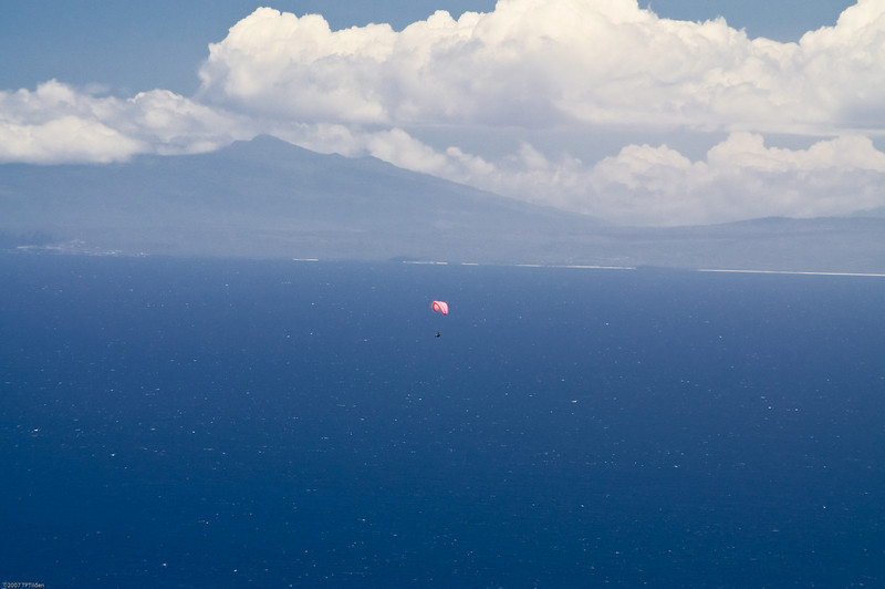 Paragliders  and Hang Gliders over Makapuu-71
