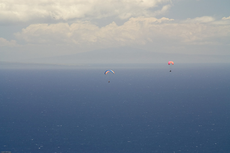 Paragliders  and Hang Gliders over Makapuu-65