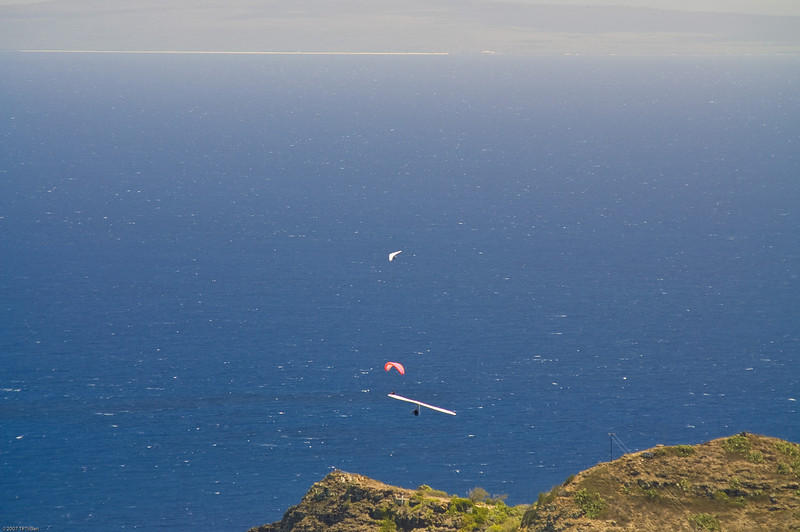 Paragliders  and Hang Gliders over Makapuu-23