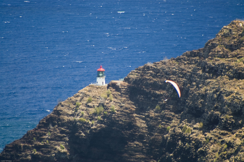 Paragliders  and Hang Gliders over Makapuu-59