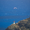 Paragliders  and Hang Gliders over Makapuu-76