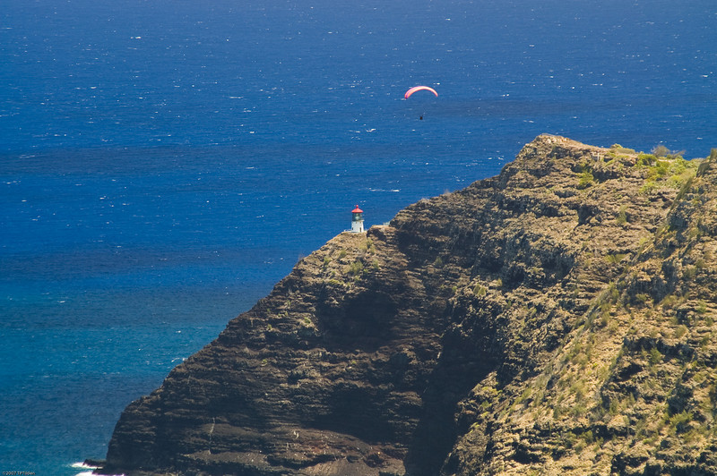 Paragliders  and Hang Gliders over Makapuu-74
