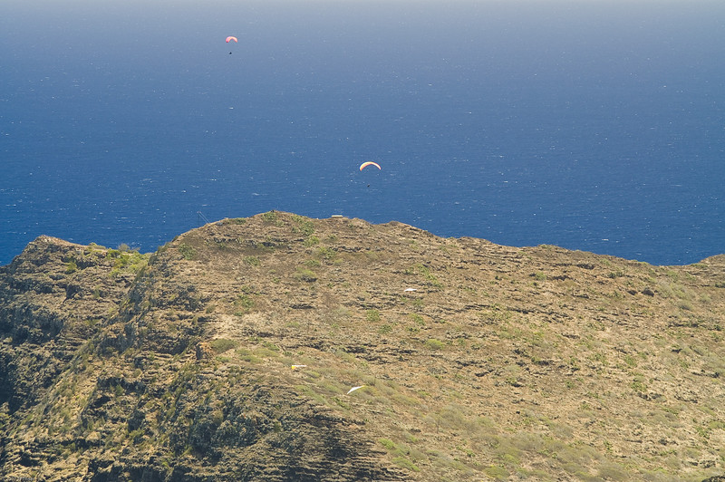 Paragliders  and Hang Gliders over Makapuu-52