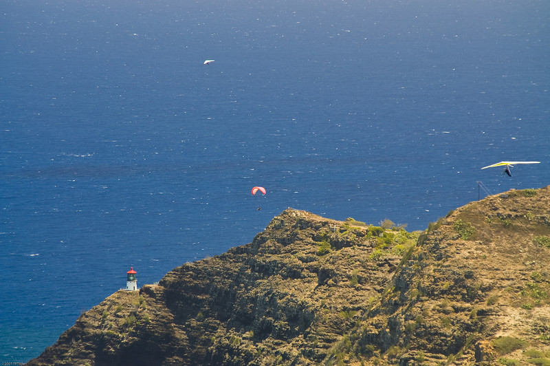 Paragliders  and Hang Gliders over Makapuu-28