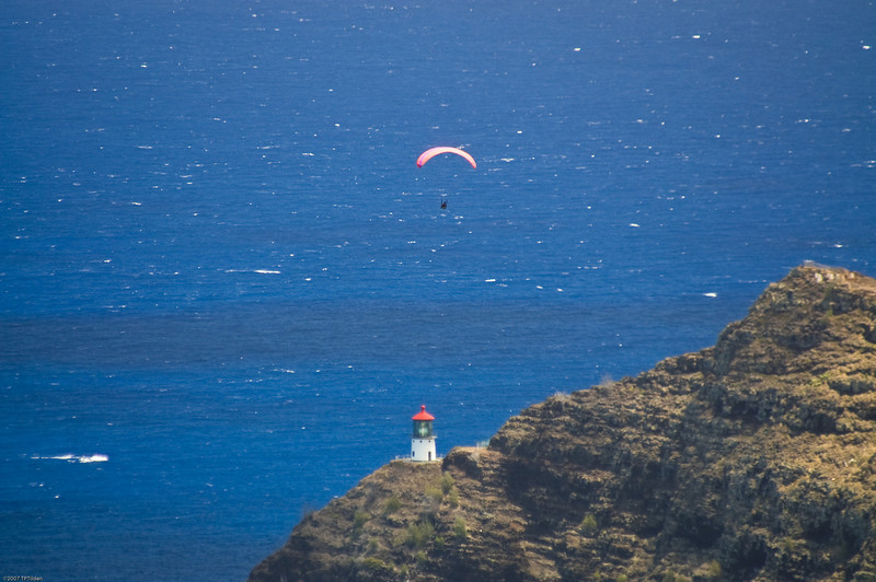 Paragliders  and Hang Gliders over Makapuu-77