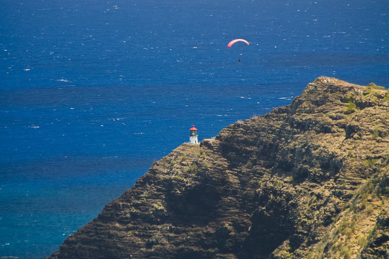 Paragliders  and Hang Gliders over Makapuu-75