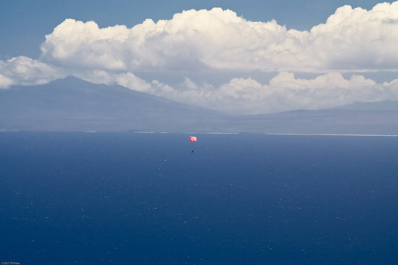 Paragliders  and Hang Gliders over Makapuu-70