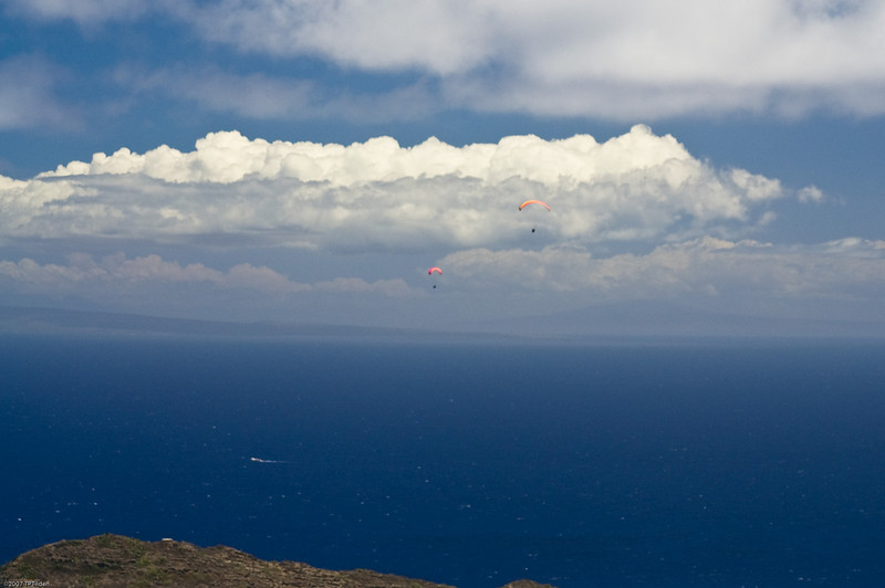 Paragliders  and Hang Gliders over Makapuu-68
