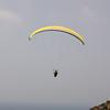 Voggy Flying-6