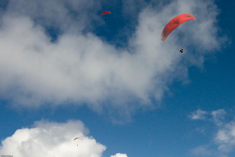 Flyin All Around-298