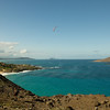 Maneuvering Makapuu-3