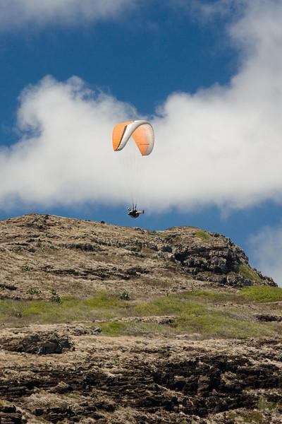 Maui Wowii-109