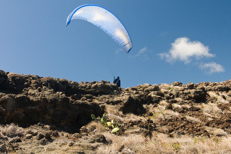 Maui Wowii-20