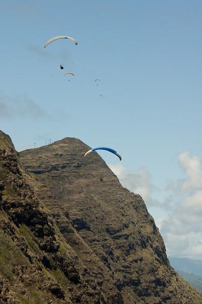 Maui Wowii-52