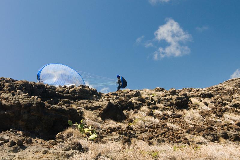 Maui Wowii-16