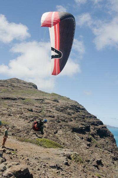 Maui Wowii-161