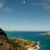 Maui Wowii-150