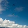 Blue Sky-55