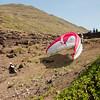 Paragliders at play-197
