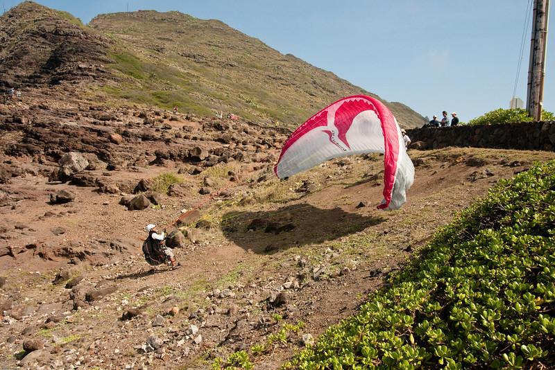 Paragliders at play-194