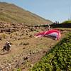 Paragliders at play-196