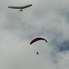 Paragliders at Makapuu-79