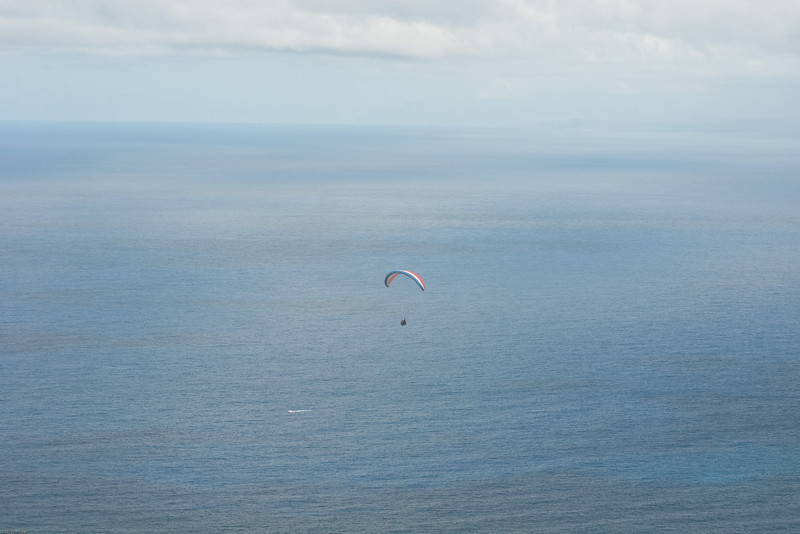Paragliders at Makapuu-1