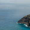 Paragliders at Makapuu-16