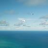 Tandem flight-80