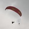 Paraglider landings-94