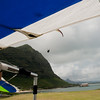 Paraglider landings-84