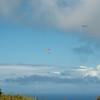 Makapuu Fly In-6