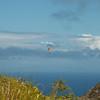 Makapuu Fly In-4